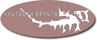 Sawtooth Branch